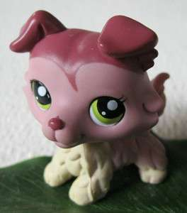 Littlest Pet Shop: CLEVER COLLIE DOG, GREEN EYES #1723
