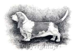 BASSET HOUND Dog Drawing ART NOTE CARDS by Artist DJR
