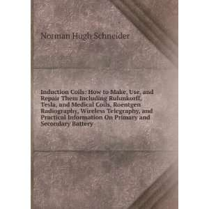 On Primary and Secondary Battery: Norman Hugh Schneider: Books