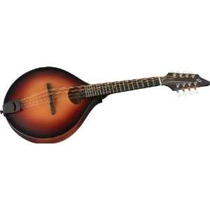 Breedlove American Series Oo Mandolin Sunburst Musical