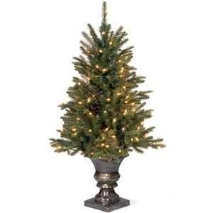 Fir Entrance Christmas Tree; 50 Clear Lights UL
