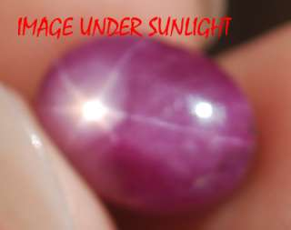 20 Ct NATURAL UNTREATED BEAUTIFUL STAR RUBY {VIDEO}