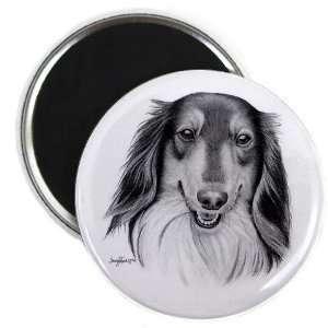 Creative Clam Collie Lassie Dog Pencil Sketch Art 2.25