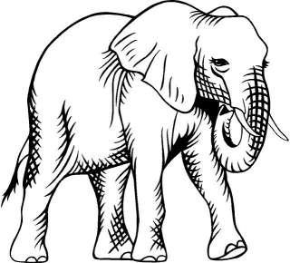 Elephant Large Vinyl Decal Car Truck Window Sticker 10 |