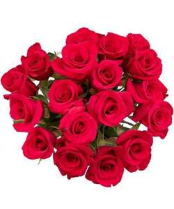 Dozen Red Rose + 6 Free + Single Rose Bouquet  Overstock