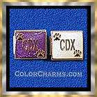 dog charm cdx w paw print purple bg 9mm italian