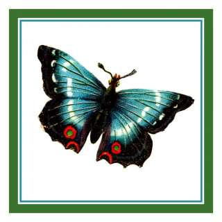 Colorful Peacock Black Butterfly Counted Cross Stitch Chart