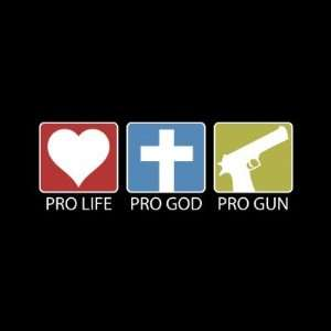 Pro Life, Pro God, Pro Gun Stickers: Arts, Crafts & Sewing