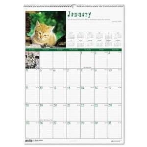House of Doolittle Kittens Monthly Wall Calendar Office