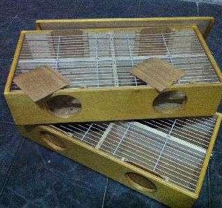 Transportin doble Profesional (32 pájaros) (11961595)    anuncios