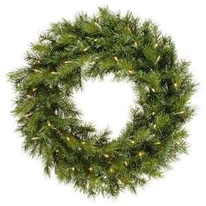 Pine Christmas Wreath Dura Lit 50 Multi color Lights