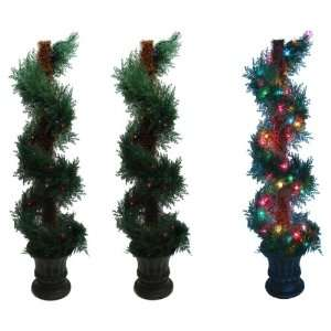 Fern Spiral Tree Multi colored Lights Set of Two