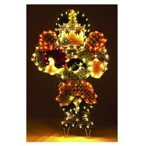 Iowa Hawkeyes Lighted Lawn Figure: Sports & Outdoors