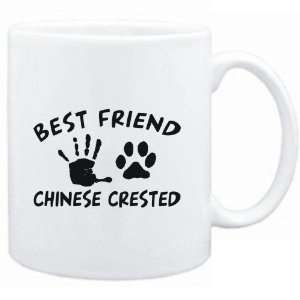 White  MY BEST FRIEND IS MY Chinese Crested  Dogs