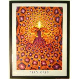 One by Alex Grey Framed Poster Edition 25x19: Home