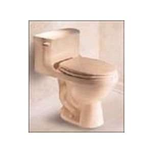 American Standard High Hamilton Toilet   One piece   2096